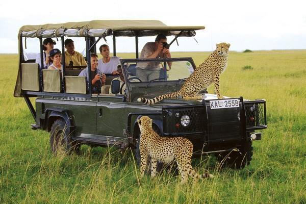 Africa Tour and Travel – Nature at Its Wild Best